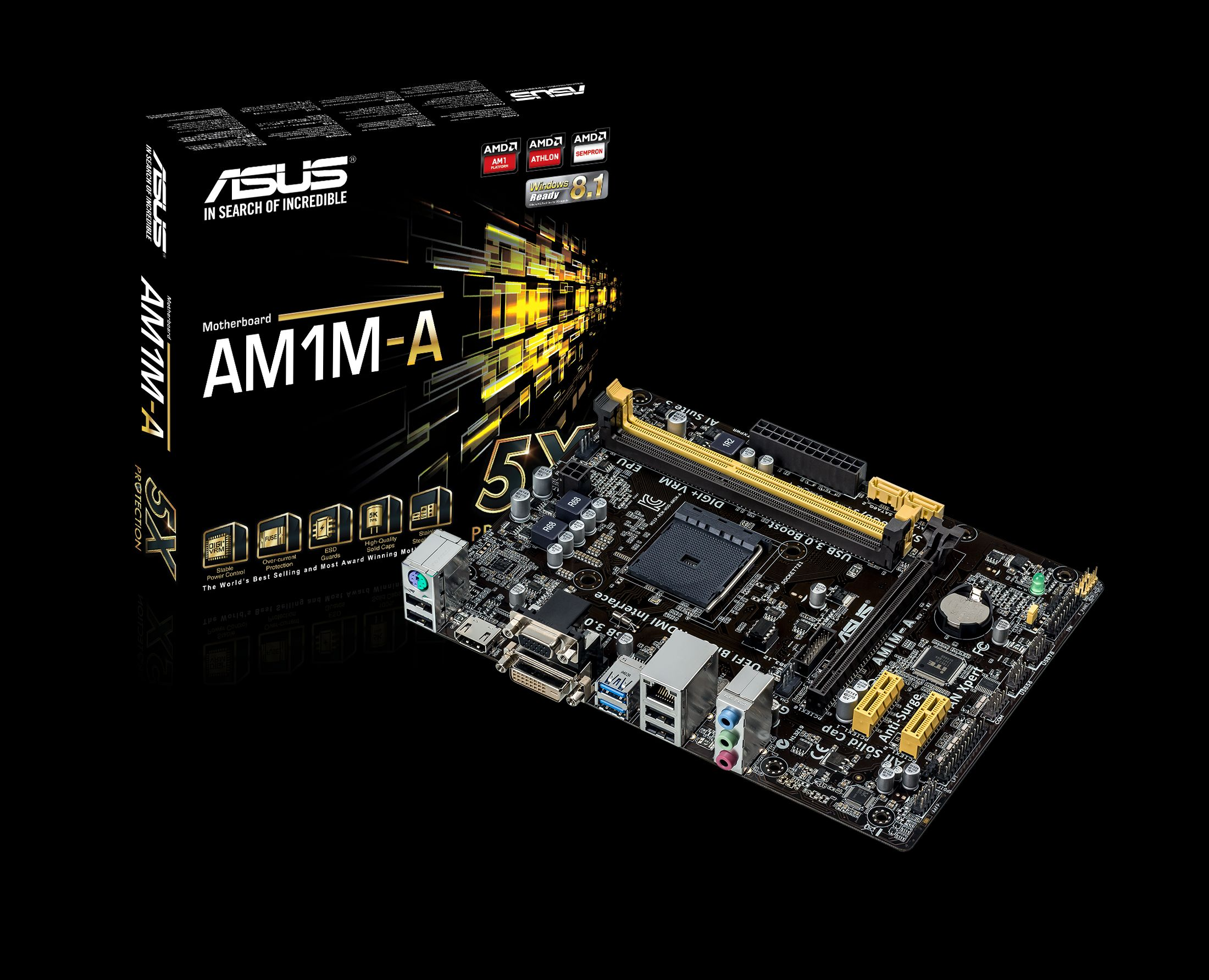 ASUS launches AM1M-A Motherboard for AMD Kabini APUs