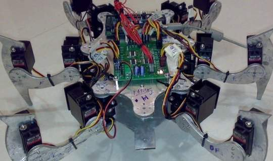 Hexapod Project : Introduction